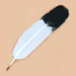 Imitaion Dyed Eagle Feathers